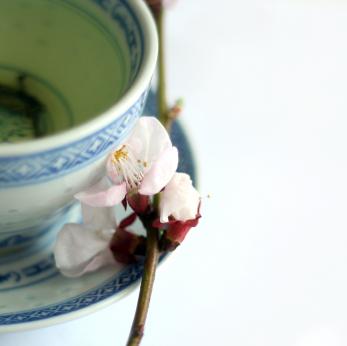Series 4: Skin food - green tea health benefits