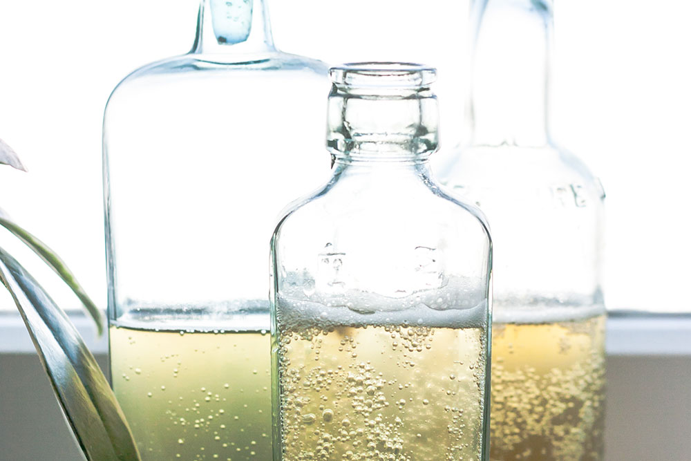Kombucha – great for gut health… but what about the sugar?